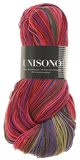 Atelier Zitron Unisono Color 100g - Special Offer : 1280