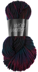 Atelier Zitron Wind und Wetter hand dyed - Bag of 5 balls - 5 x 100g : 04 Monsun
